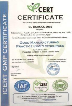 sertificate-new-2
