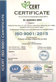 sertificate-new-4